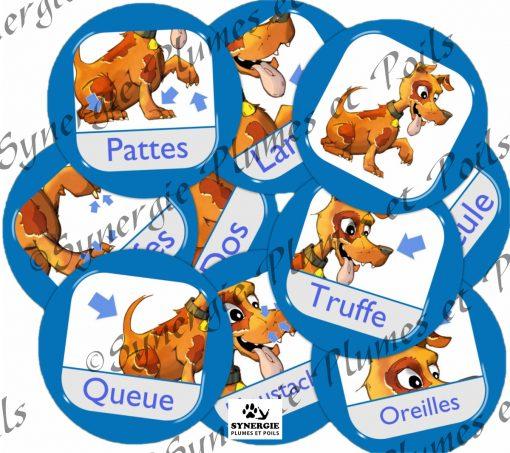 Matériel zoothérapie rondelles parties du chien