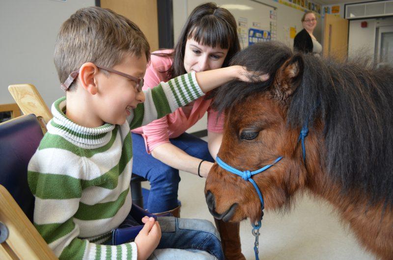 Enfant_zoothérapie_école_cheval miniature