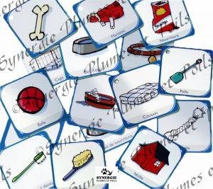 Matériel zoothérapie cartes pictogrammes items du chien 2